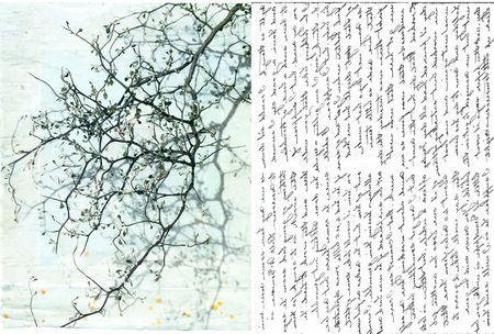 Branch+ alf letter 2