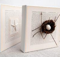 Nest +star