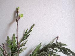 Twigs 2