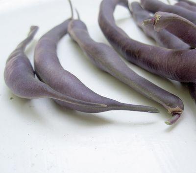 Beans1