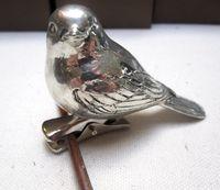 Box bird1