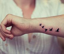 Birds,tattoo-ef36bd6f8776ff13bf39e9375642f1b4_m